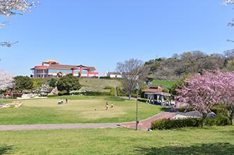 広い芝生の運動場